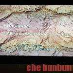 """""""Ç""""岩波ホールにて公開決定!エストニア映画「みかんの丘」"""