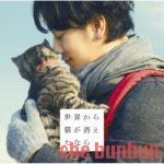 【ネタバレ】「世界から猫が消えたなら」が貴方の好きな映画は系バトル映画だった件