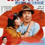 【寅さんフルマラソン㉕】「男はつらいよ 寅次郎ハイビスカスの花」リリー3rdマッチ!