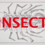 『蟲』ヤン・シュヴァンクマイエル引退作!狂ったアニメの裏側魅せます